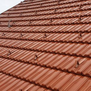 absturzsicherung dach